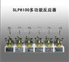 SLP6100多功能反应器