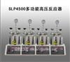 SLP4500多功能高压反应器