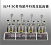 SLP4100多功能平行高压反应器