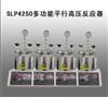 SLP4250多功能平行高压反应器