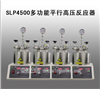 SLP4500多功能平行高压反应器