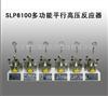 SLP6100多功能平行高压反应器