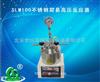 SLM100不锈钢简易高压反应器