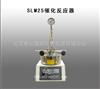 SLM25催化反应器