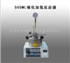 500ML催化加氢反应器