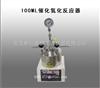 100ML催化氢化反应器