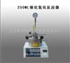 250ML催化氢化反应器