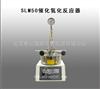 SLM50催化氢化反应器