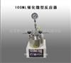 100ML催化微型反应器