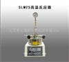 SLM25高温反应器