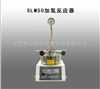 SLM50加氢反应器