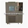 ST-DWX低溫試驗箱