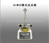 SLM50聚合反应器