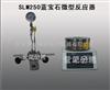 SLM250蓝宝石微型反应器