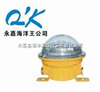 BFC8183固態免維護防爆燈 BFC8183 海洋王LED燈 BFC8183-C-B-A(AC/DC12-24-36V,5W)