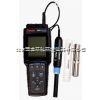 420D-01A便携式PH/溶氧仪