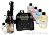 110D-01A溶解氧测量仪