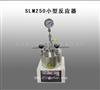 厂家团购SLM250小型反应器