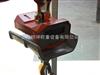 LK-OCS直视型电子吊秤,2吨耐高温电子吊磅秤