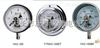 YP-100F1-F膜片压力表/YP-100F厂家