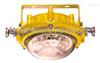 节能防爆灯,供应海洋王BLED9121防爆免维护灯,厂家直销