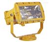 BFC8100泛光灯供应商 IIB级室外防爆泛光灯厂家 BFD91-L400