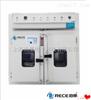 RGW-800高温恒温试验箱