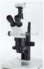 S APOLeica S APO 常规体视显微镜