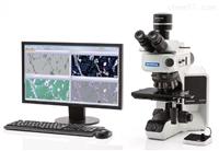 正置式金相显微镜